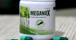 Meganox Antioxidant