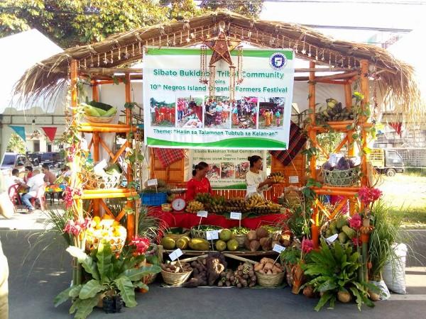 Negros Organic Festival 1