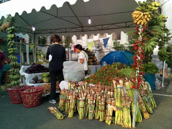 Negros Organic Festival 2