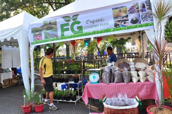 Negros Organic Festival 4
