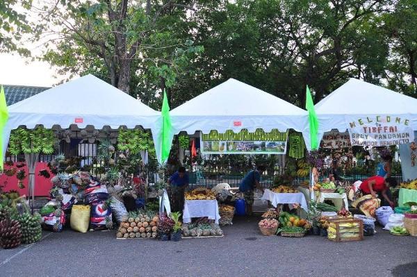 Negros Organic Festival 6
