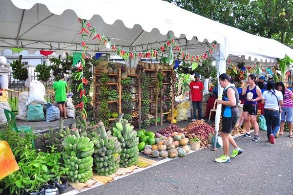 Negros Organic Festival 7