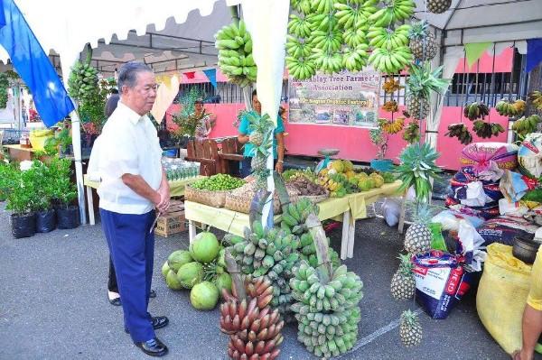 Negros Organic Festival with Gov Maranon