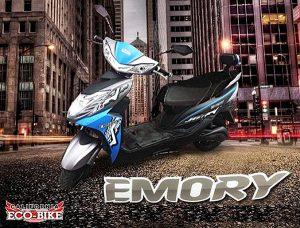 emory ecobike