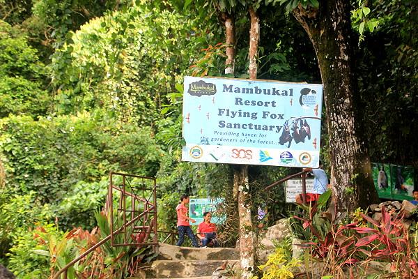 Mambukal Resort Bat Sanctuary